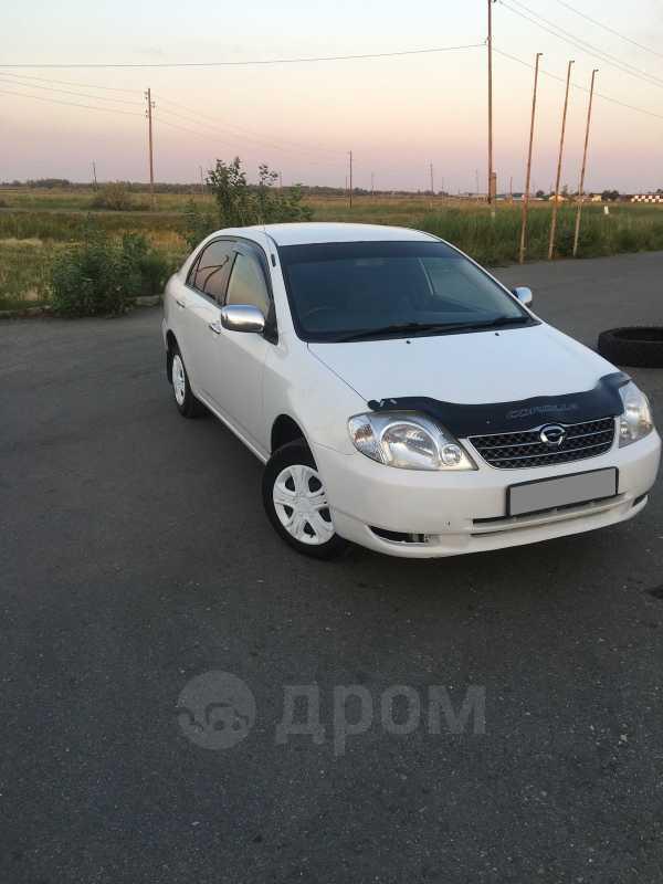 Toyota Corolla, 2002 год, 323 000 руб.