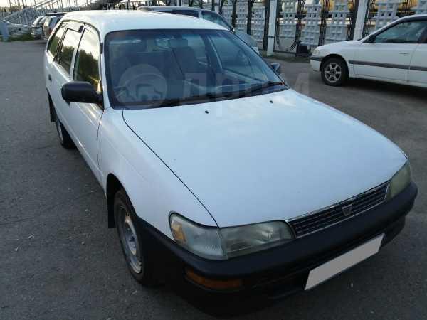 Toyota Corolla, 1999 год, 162 000 руб.