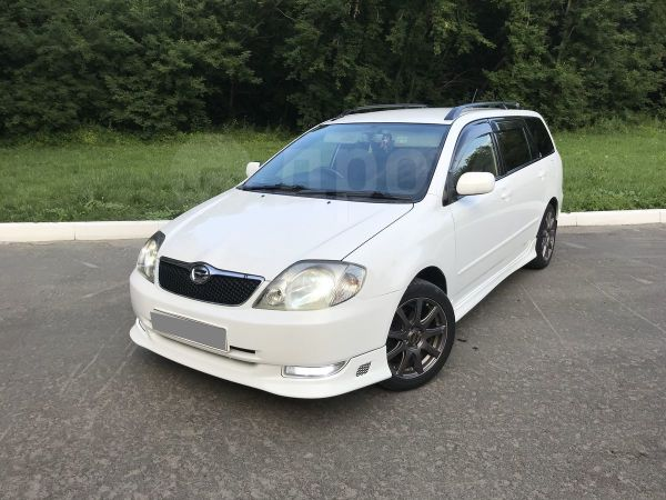 Toyota Corolla Fielder, 2003 год, 410 000 руб.
