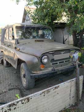 Михайловка 3151 1986