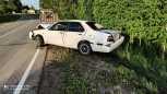 Nissan Bluebird, 2000 год, 90 000 руб.