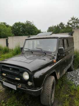 Советская Гавань 3153 2002