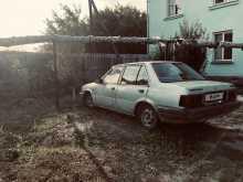 Шадринск Sunny 1988