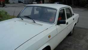 Челябинск 31029 Волга 1993