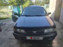 Великовечное Primera 1991