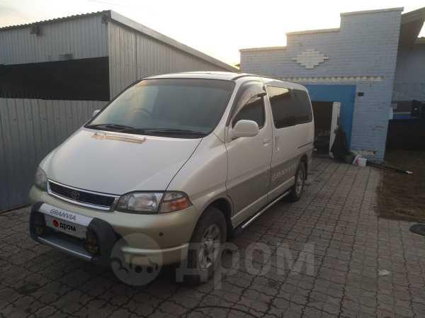 Toyota Granvia, 1997 год, 450 000 руб.