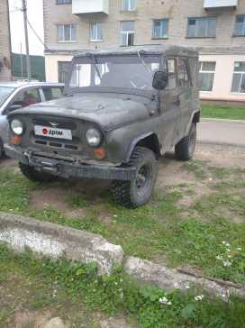 Биробиджан 3151 1992