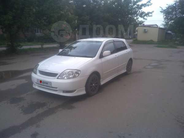 Toyota Corolla Runx, 2001 год, 298 000 руб.