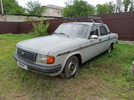 Благовещенск 31029 Волга 1993