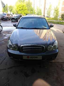Губкин Sonata 2007