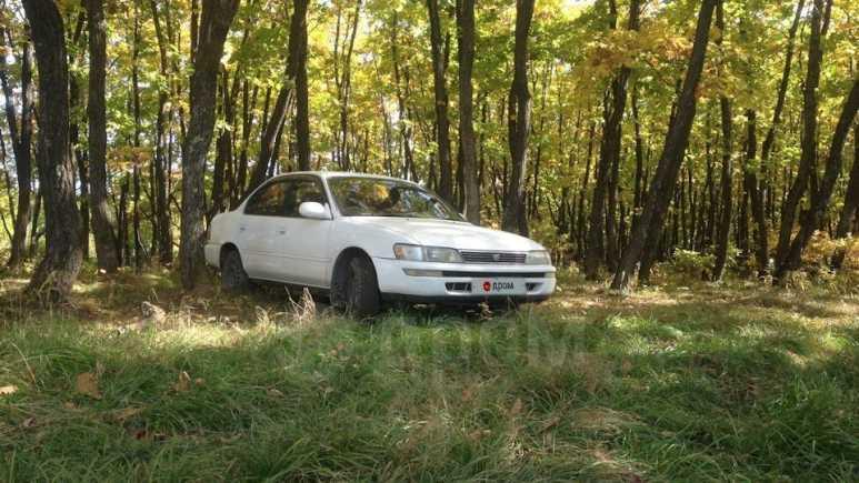 Toyota Corolla, 1993 год, 185 000 руб.