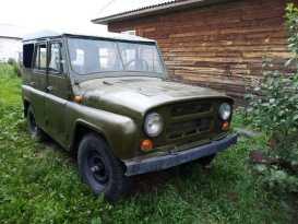 Шадринск 3151 1992