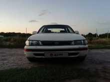 Багаевская Corolla 1992
