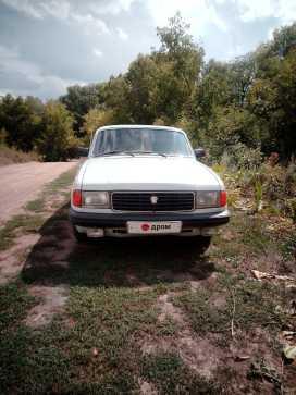 Змеиногорск 31029 Волга 1992