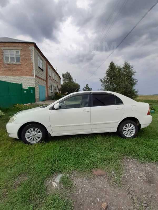 Toyota Corolla, 2001 год, 260 000 руб.