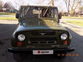 Рубцовск 3151 1992