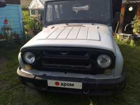 Партизанское 3151 2006