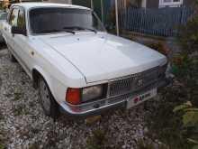 Берёзовский 3102 Волга 2001