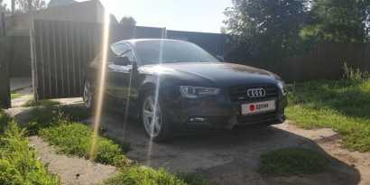 Курган A5 2012