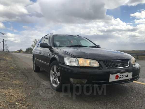 Toyota Camry Gracia, 1997 год, 235 000 руб.