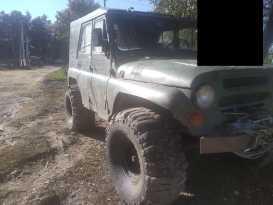 Облучье УАЗ 3151 1990