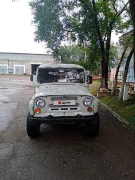Биробиджан 3151 1994