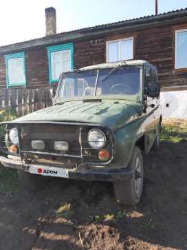 Шелопугино 3151 1993