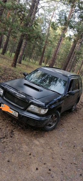 Чита Forester 2000