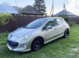 Тальменка 308 2008