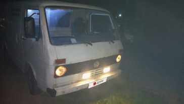 Брянск Multivan 1981