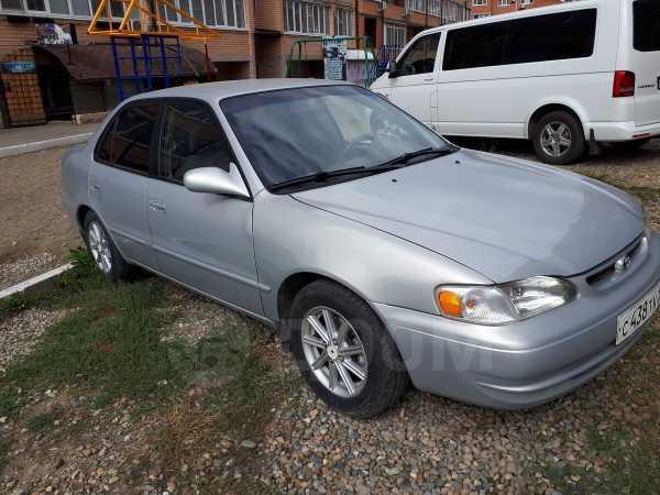 Toyota Corolla, 1998 год, 253 000 руб.