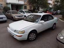 Краснодар Corolla 1993