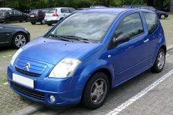 Раевская C2 2004