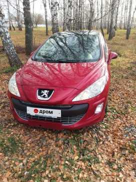 Новосибирск 308 2011