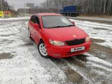 Шадринск Allex 2001