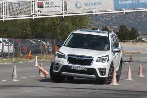 Новый Subaru Forester прошел «лосиный тест»: вот что из этого вышло