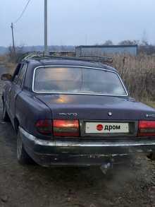 Электросталь 3110 Волга 2000