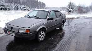 Павловский Посад Passat 1989