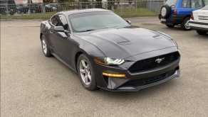 Москва Mustang 2019