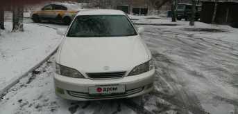 Пушкино Windom 2001