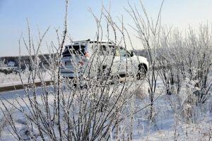 Заблудившиеся в Сибири