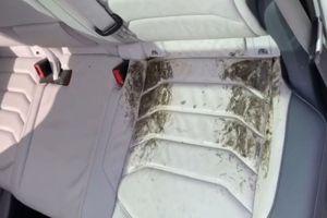 Житель Миасса отсудил у дилера 7,3 млн рублей за Volkswagen Touareg с плесенью