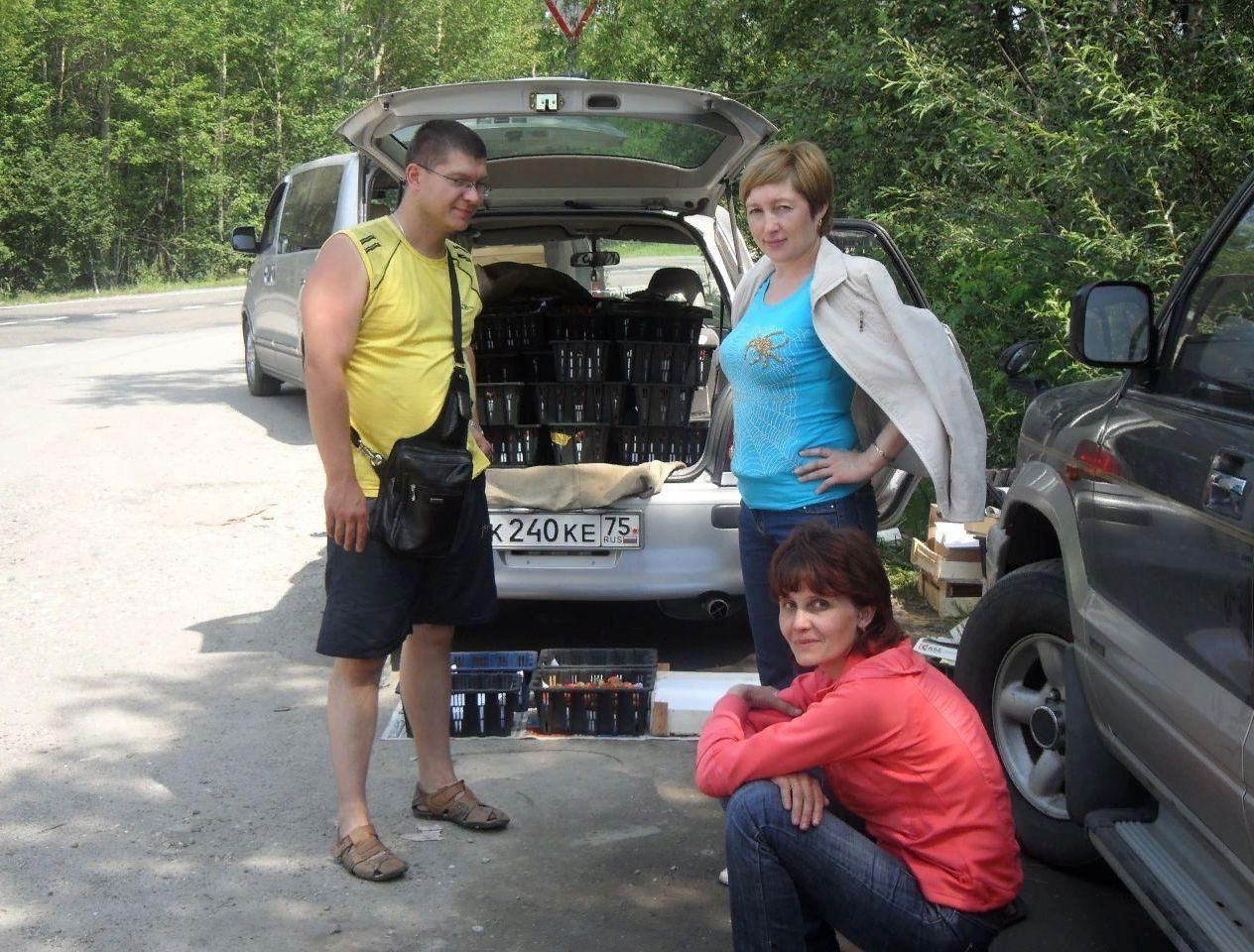 Поездка на Байкал за клубникой 2013