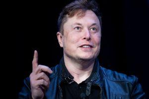Илон Маск: Tesla Model Y отберет у Toyota Corolla звание самого популярного автомобиля