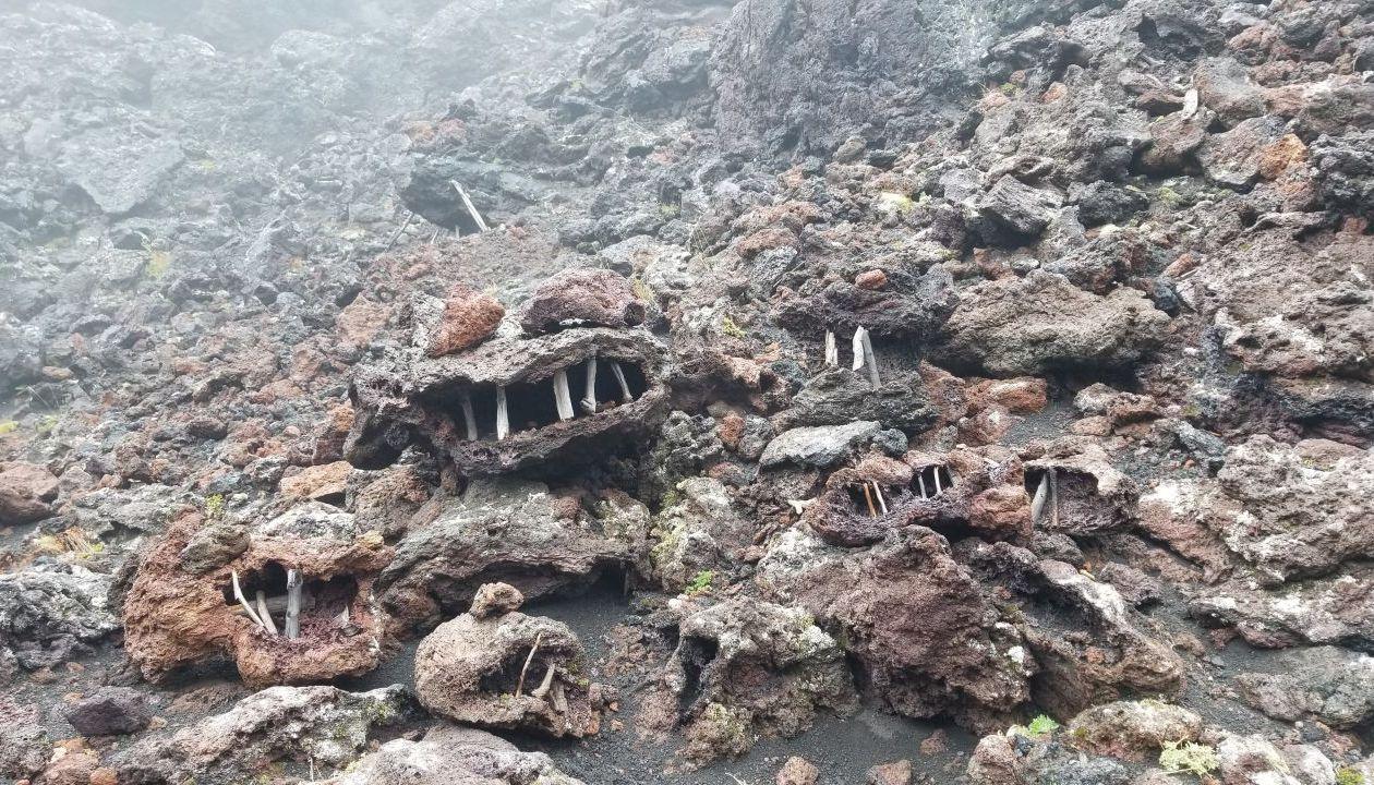 Гомулы- Духи вулкана