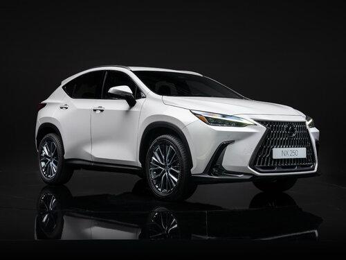 Lexus NX250 2021