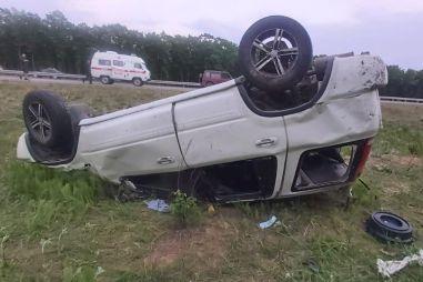 Клещ спровоцировал тяжелое ДТП в Приморье
