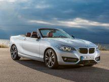BMW 2-Series 2014, открытый кузов, 1 поколение, F23