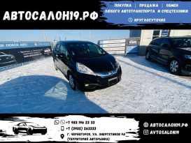 Черногорск Fit Shuttle 2014