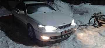 Павловск Windom 2000